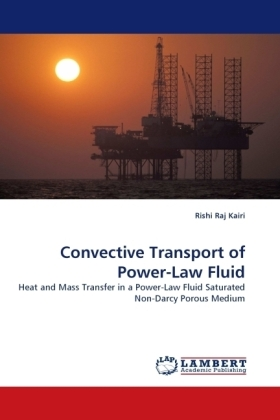 Convective Transport of Power-Law Fluid | Dodax.ch