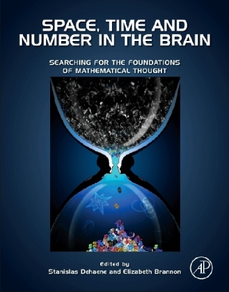 Space, Time and Number in the Brain | Dodax.ch