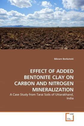 EFFECT OF ADDED BENTONITE CLAY ON CARBON AND NITROGEN MINERALIZATION | Dodax.pl