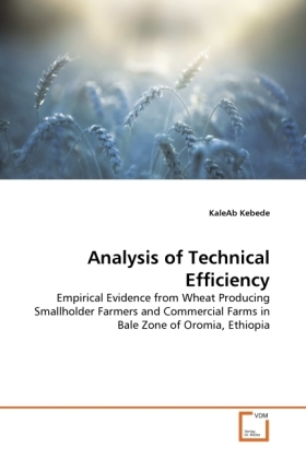 Analysis of Technical Efficiency | Dodax.ch
