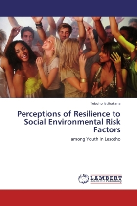 Perceptions of Resilience to Social Environmental Risk Factors | Dodax.ch