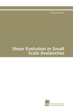 Shear Evolution in Small Scale Avalanches   Dodax.pl