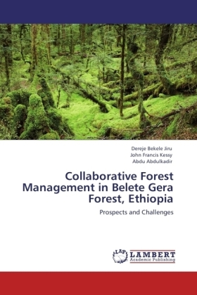 Collaborative Forest Management in Belete Gera Forest, Ethiopia | Dodax.fr