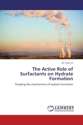 The Active Role of Surfactants on Hydrate Formation | Dodax.pl