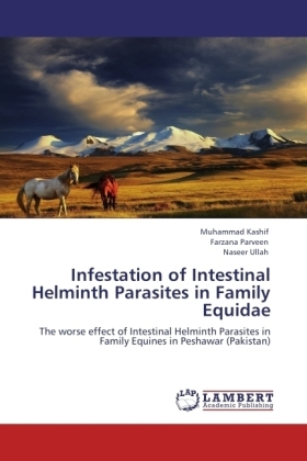 Infestation of Intestinal Helminth Parasites in Family Equidae | Dodax.pl