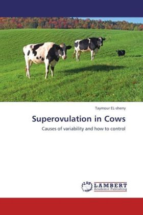 Superovulation in Cows | Dodax.at