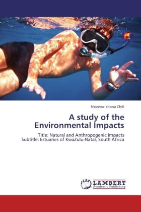 A study of the Environmental Impacts | Dodax.de