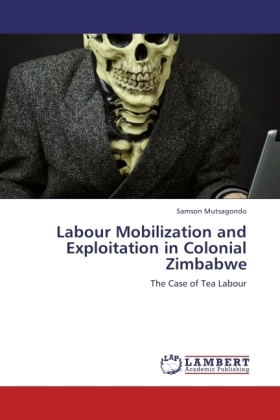 Labour Mobilization and Exploitation in Colonial Zimbabwe | Dodax.at
