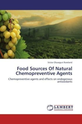 Food Sources Of Natural Chemopreventive Agents | Dodax.pl