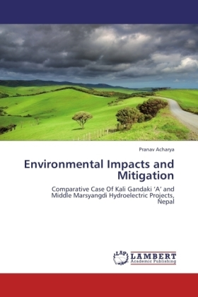 Environmental Impacts and Mitigation | Dodax.pl