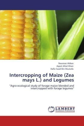 Intercropping of Maize (Zea mays L.) and Legumes | Dodax.pl