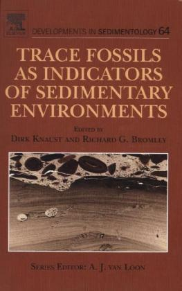 Trace Fossils as Indicators of Sedimentary Environments | Dodax.pl