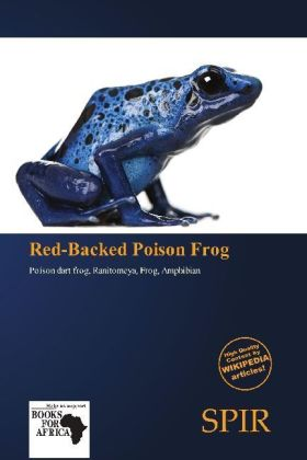 Red-Backed Poison Frog | Dodax.at