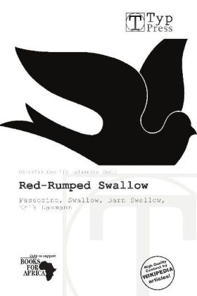 Red-Rumped Swallow | Dodax.at