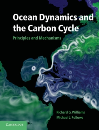 Ocean Dynamics and the Carbon Cycle | Dodax.pl