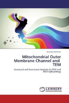 Mitochondrial Outer Membrane Channel and TEM | Dodax.pl