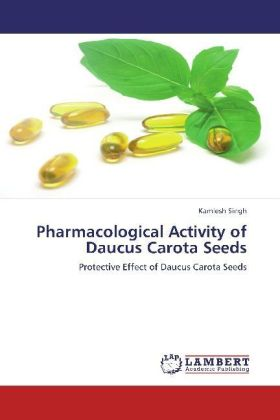 Pharmacological Activity of Daucus Carota Seeds | Dodax.pl