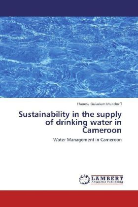 Sustainability in the supply of drinking water in Cameroon   Dodax.at