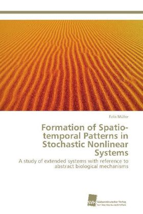 Formation of Spatio-temporal Patterns in Stochastic Nonlinear Systems   Dodax.pl