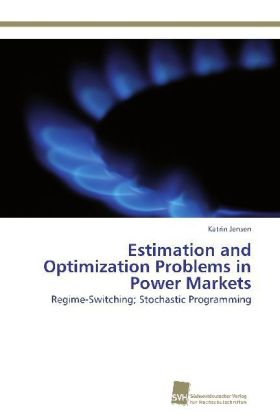 Estimation and Optimization Problems in Power Markets | Dodax.pl