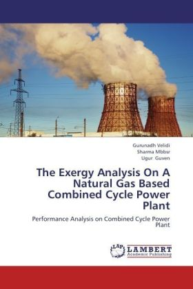 The Exergy Analysis On A Natural Gas Based Combined Cycle Power Plant | Dodax.pl