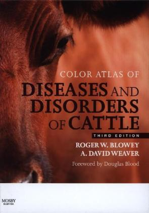 Color Atlas of Diseases and Disorders of Cattle | Dodax.pl