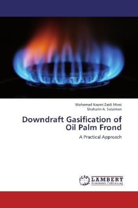 Downdraft Gasification of Oil Palm Frond | Dodax.pl
