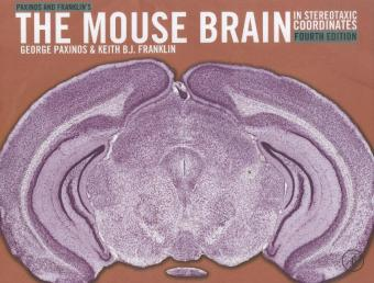 Paxinos and Franklin's the Mouse Brain in Stereotaxic Coordinates   Dodax.pl