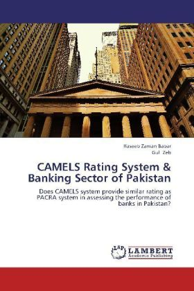 CAMELS Rating System & Banking Sector of Pakistan | Dodax.de