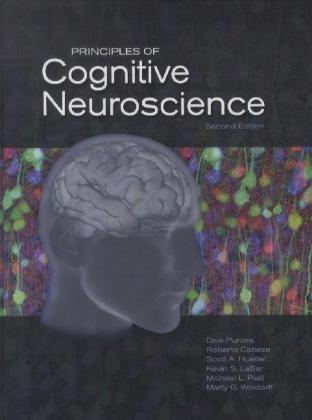Principles of Cognitive Neuroscience | Dodax.pl