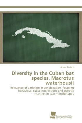 Diversity in the Cuban bat species, Macrotus waterhousii | Dodax.pl