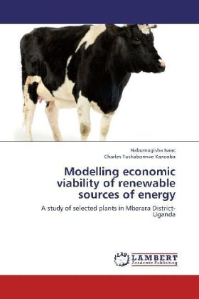 Modelling economic viability of renewable sources of energy | Dodax.at