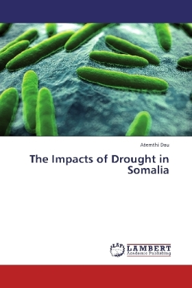 The Impacts of Drought in Somalia   Dodax.ch