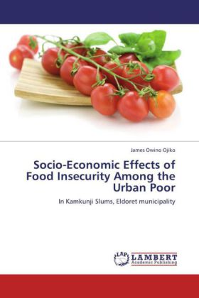 Socio-Economic Effects of Food Insecurity Among the Urban Poor   Dodax.pl
