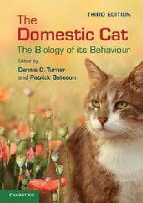 The Domestic Cat | Dodax.at