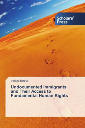 Undocumented Immigrants and Their Access to Fundamental Human Rights | Dodax.pl