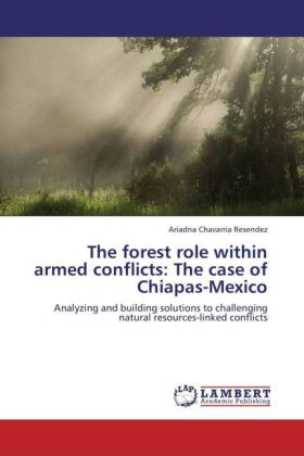 The forest role within armed conflicts: The case of Chiapas-Mexico | Dodax.at
