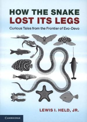 How the Snake Lost its Legs | Dodax.at