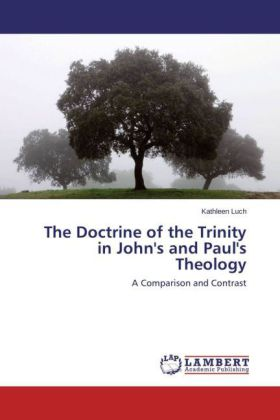 The Doctrine of the Trinity in John's and Paul's Theology | Dodax.pl