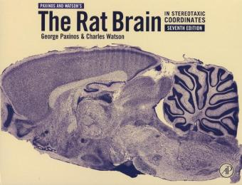 The Rat Brain in Stereotaxic Coordinates | Dodax.ch