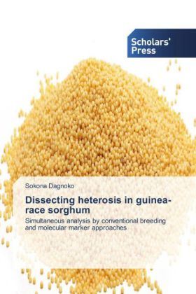 Dissecting heterosis in guinea-race sorghum | Dodax.at
