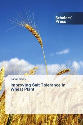 Improving Salt Tolerance in Wheat Plant | Dodax.pl