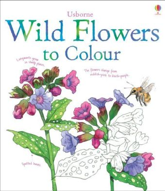 Usborne Wild Flowers to Colour | Dodax.at