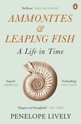 Ammonites and Leaping Fish | Dodax.ch