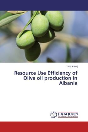 Resource Use Efficiency of Olive oil production in Albania | Dodax.pl