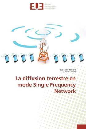 La diffusion terrestre en mode Single Frequency Network | Dodax.pl