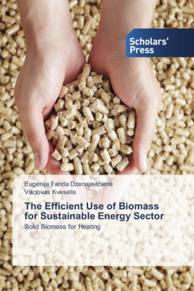 The Efficient Use of Biomass for Sustainable Energy Sector | Dodax.pl
