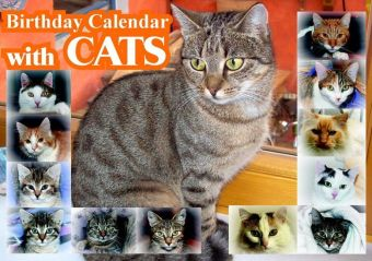 Birthday Calendar with CATS | Dodax.ch