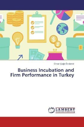 Business Incubation and Firm Performance in Turkey | Dodax.at