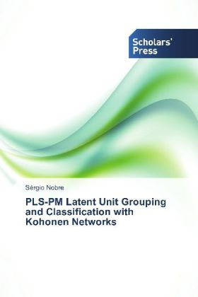 PLS-PM Latent Unit Grouping and Classification with Kohonen Networks | Dodax.pl